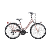 BOTTECCHIA 223 TY 500 21S LADY